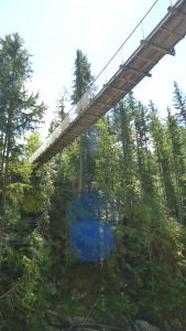 Suspension Bridge Waterfalls