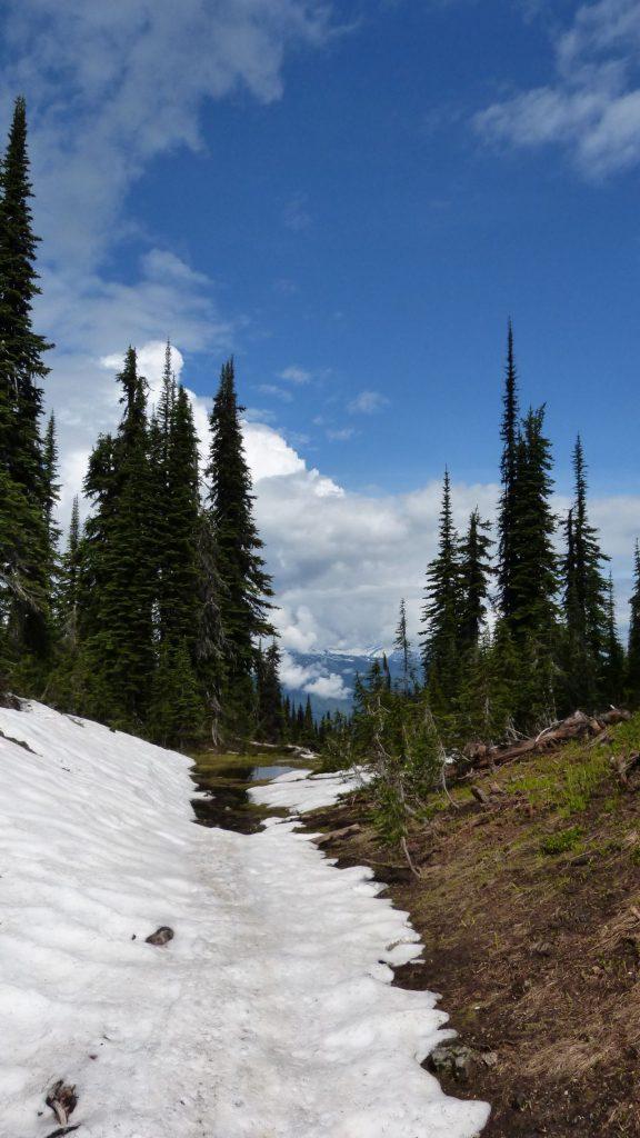 Wanderung auf dem Mount Revelstoke