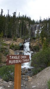 Tangle Creek