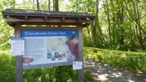 Sandbanks Dunes Trail